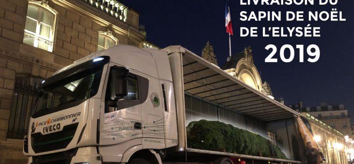 Transport GNV du sapin de Noël de l'Elysée 2019